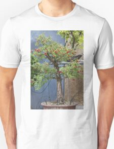 bonsai in the garden T-Shirt