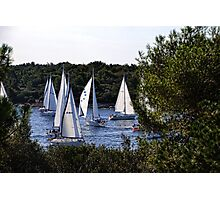 Sailboats Getting Ready To Race Photographic Print