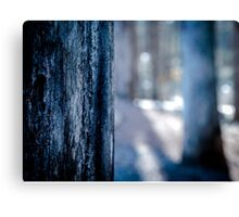 The Blurred Forest Canvas Print