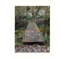 Plank Bridge Art Print