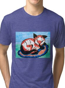 Sleeping Kitten Tri-blend T-Shirt