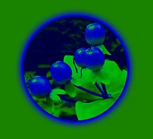 Berries green by pixies000
