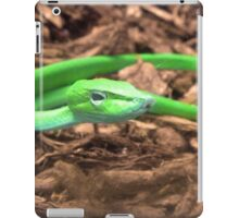 Here's Lookin At You iPad Case/Skin