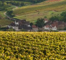 Vineyard in Burgundy Sticker
