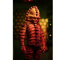 Zygon in Minature Photographic Print