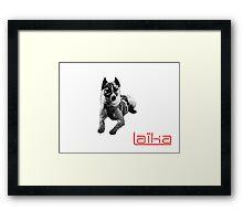 Laïka Framed Print