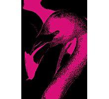 Neon Pink Flamingo Photographic Print