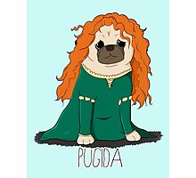 Pugida! Photographic Print