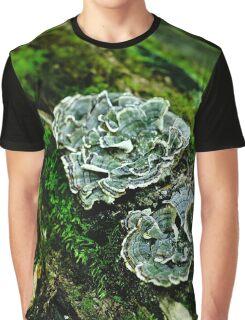 Fungus on a Tree Stump  Graphic T-Shirt