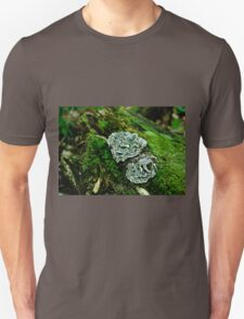 Fungus on a Tree Stump  Unisex T-Shirt
