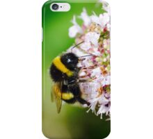 Busy Bumble iPhone Case/Skin