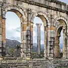 Looking Through The Columns At Volubilus by Robert Kelch, M.D.