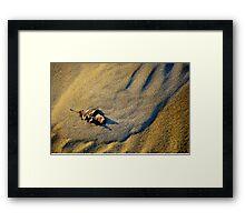 Dune & Leaf Framed Print
