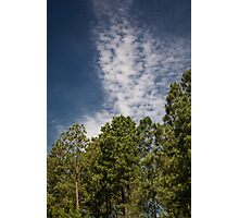 Blue Sky Day Photographic Print