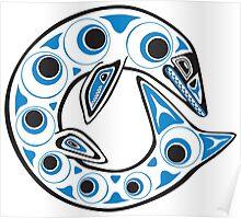 Haida Globidens Poster