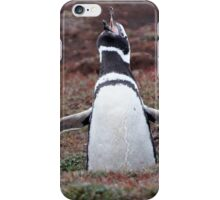 "Magellanic Penguin ~ ""Sing out loud"" iPhone Case/Skin"