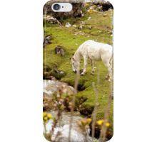 Wild Horse, Peru iPhone Case/Skin
