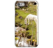 Wild Horse, Peru iPhone Case/Skin