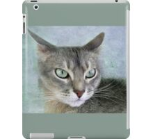 Painted Reverie iPad Case/Skin