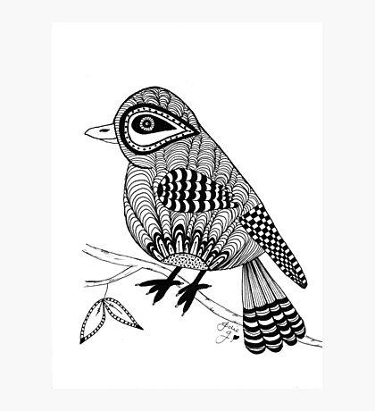 'Beaker' the bird Photographic Print