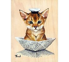 Sailor Cat Photographic Print