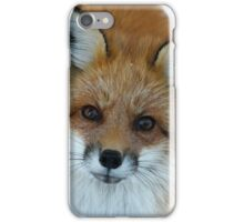 Things are looking up iPhone Case/Skin