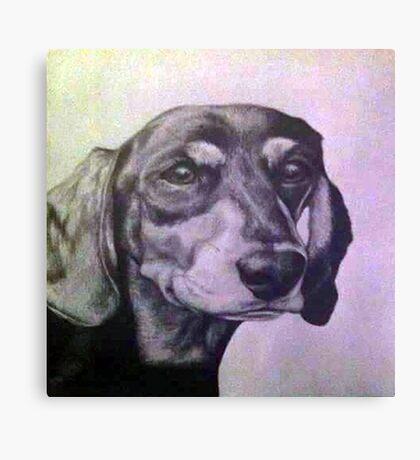 Monty  Canvas Print