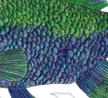 Green/Blue Fish Sticker