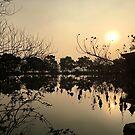Sunset, West Lake, Hangzhou, China by Simone Maynard