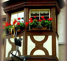 Window Box by Charmiene Maxwell-Batten