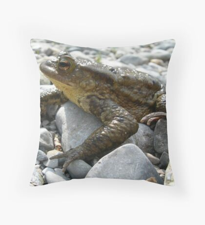 Bufo Bufo Toad Lounging On Stones Throw Pillow