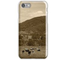 Friesian Cows iPhone Case/Skin