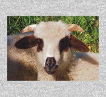 Sheep Portrait Close Up One Piece - Short Sleeve