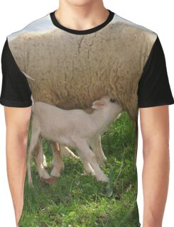 Lamb Suckling From An Ewe Graphic T-Shirt