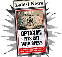 Latest News - Optician Fits Cat With Specs by David Roland