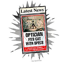 Latest News - Optician Fits Cat With Specs Photographic Print