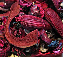 Colour Me Crimson! Pot Pourri Still Life by BlueMoonRose