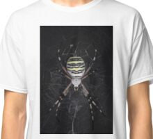 Golden Banded Garden Spider (Banded Argiope) Classic T-Shirt