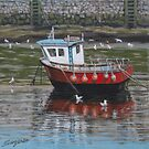 Safely moored by Freda Surgenor