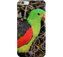 Red-winged Parrot iPhone Case/Skin