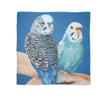 Pair of Budgerigar Scarf