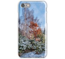 A diversity of winter iPhone Case/Skin