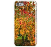 Mayday Autumn Leaves iPhone Case/Skin
