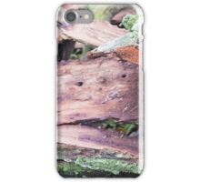 Old ragged bark, moss-covered iPhone Case/Skin