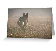 Runner in misty field Greeting Card