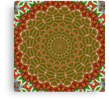 Red and Green Christmas Kaleidoscope Canvas Print