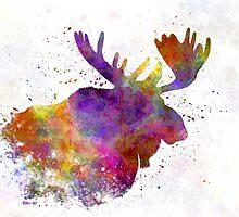 Moose 04 in watercolor by paulrommer
