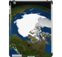 Arctic sea ice in 2005. iPad Case/Skin