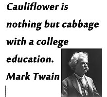 College Education - Mark Twain Photographic Print