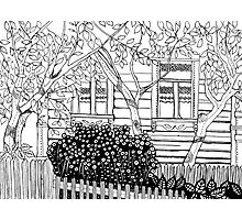 Adult Coloring Page - Country Life 01  Photographic Print